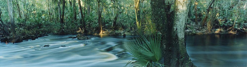 Central Florida Sierra Club
